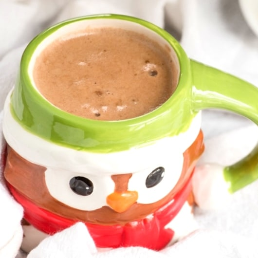 Toddler Hot Cocoa - 12-18 Month Baby Food